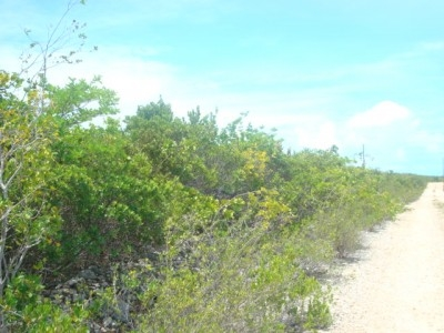 Indian Hole Point - 5.67 Acres