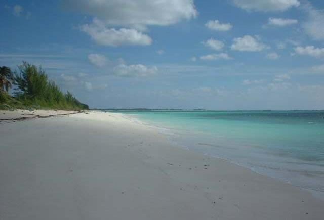 Bahama Palm Shores